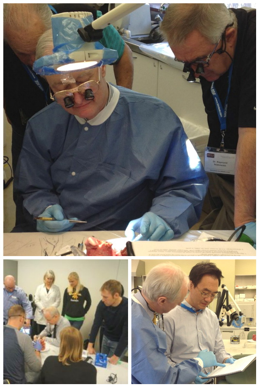 Dr Low dental workshops